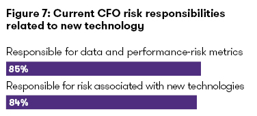 CFO risk responsibilities